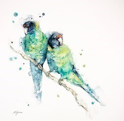 Two Ring-Necked Australian Parrots by Amanda Gordon -  sized 19x20 inches. Available from Whitewall Galleries